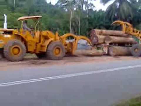Balak di kg batu 10 Padang piol Jerantut
