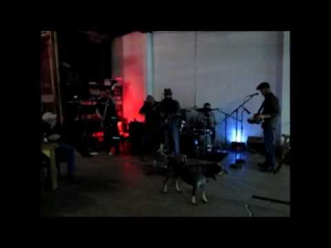 """She Knows My Name"" Shady Banks  Live @ Bluetick Brewery"