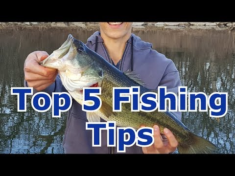 Top 5 Fishing Tips And Tricks To Catch More Fish - Advanced And Beginners