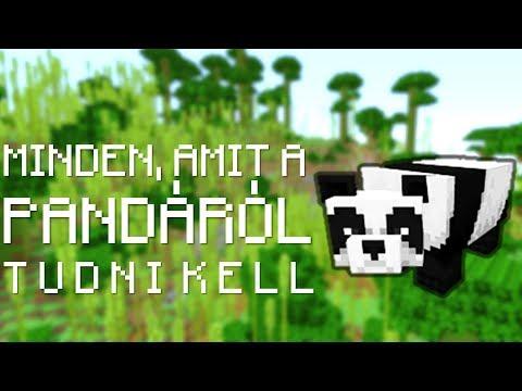Minecraft: Minden, amit a Pandáról tudni kell!