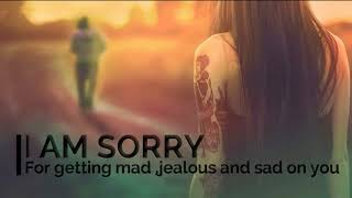 I AM SORRY for loving you too much