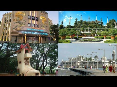 Bombay Town Explore   Taraporewala Aquarium   Hanging Garden   Kamala Nehru Park   Haji Ali - T.K