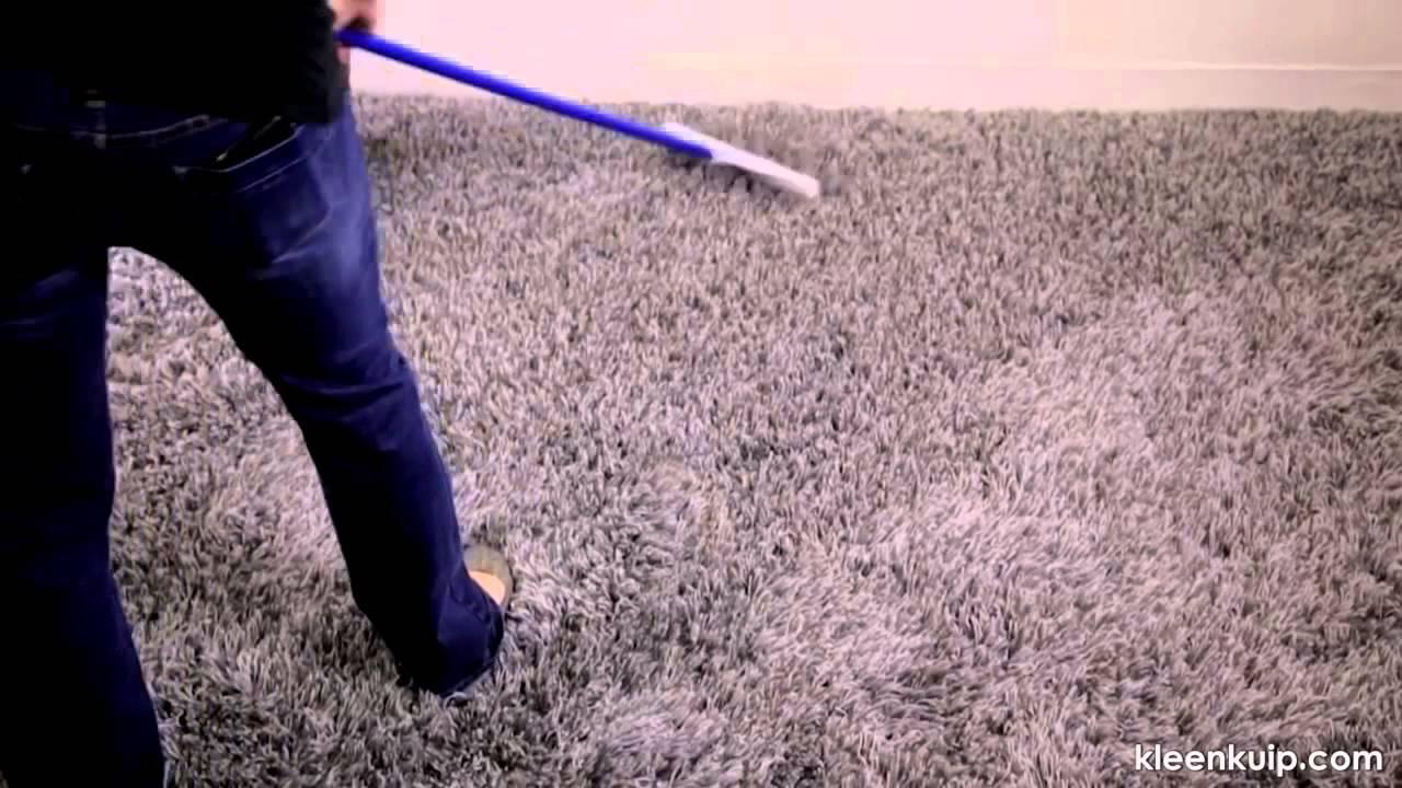 Carpet Rakes | Taraba Home Review