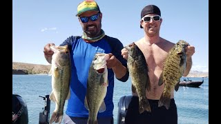 Lip rippin Lake Mohave ending with over 18 pounds for best 5 with super stick Kona Borja