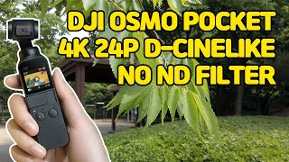 4K 오즈모포켓(DJI OSMO POCKET) TEST…