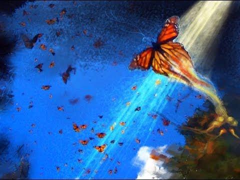 Salar Aghili - Poem of the Butterflies - Farid al-Din 'Attar سه پروانه - سالار عقیلی
