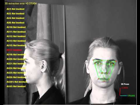Facial Action Unit Recognition