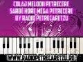 Download Mega Colaj Petrecere Populara Sarbe Hore 2017 By Radio Petrecaretzu