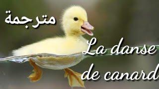 La danse des canards - مترجمة 🦆🦆 J. J Lionel 💖💖