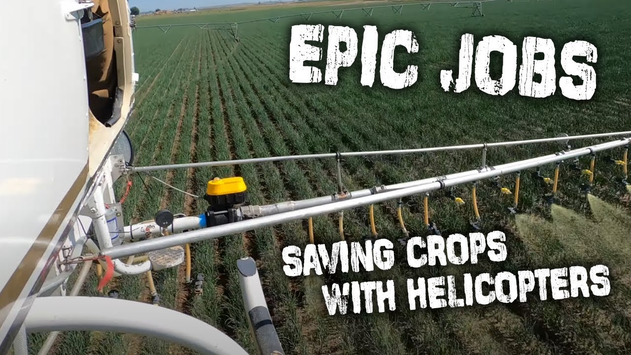 These Pilots Risk It All To Save Crops From Being Destroyed By Rain!