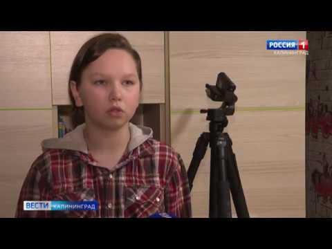 13-летний школьник из Советска занялся благотворительностью