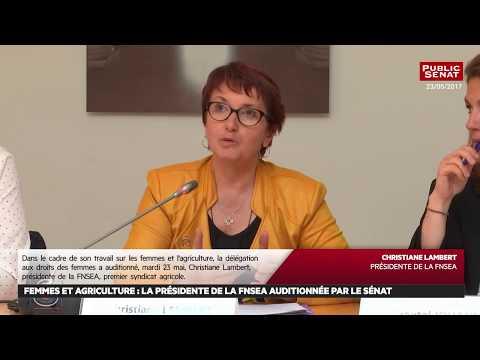 Femmes et agriculture : La présidente de la FNSEA auditionnée - Les matins du Sénat (01/06/2017)