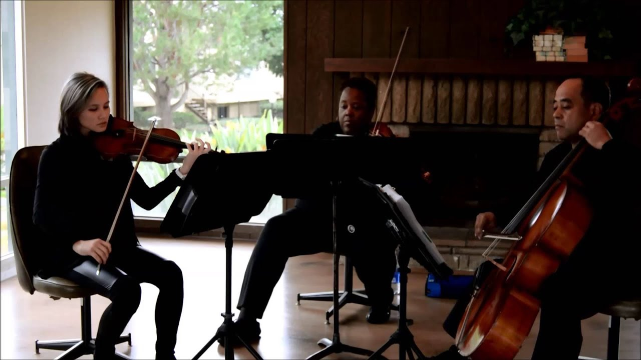 Largo From Winter Vivaldi String Trio By The Ocdamia Strings