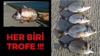 LRF İLE KARAGÖZ EFSANE VİDEO!!!!