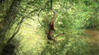 Estelle Courivaud - Aerial Hoop - Au fil de l
