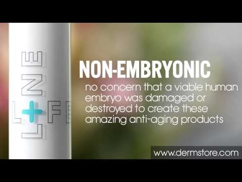 What Is Non-Embryonic Stem Cell Skin Care?