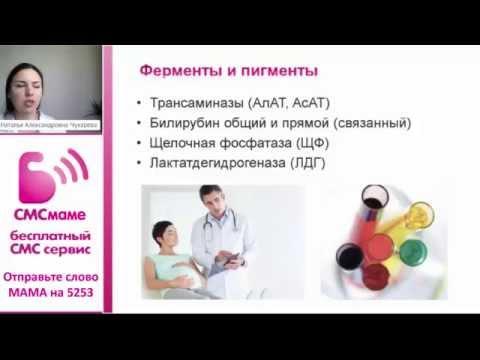 Биохимический анализ крови при беременности: нормы и показатели