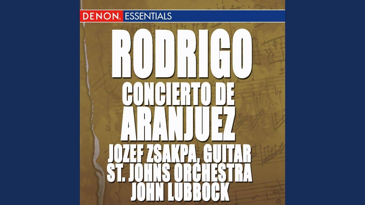 Concerto for Guitar and Strings in D Minor: III. Un Poco Allegro