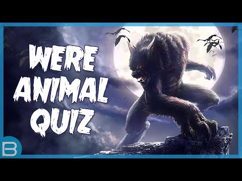 Which Were Animal Are You?