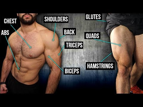 10min Home FULL BODY Workout (DUMBBELLS ONLY!!)