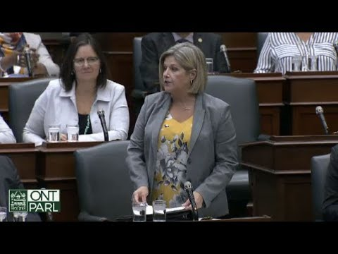 Ont. NDP Leader Andrea Horwath accused of pushing PC MPP
