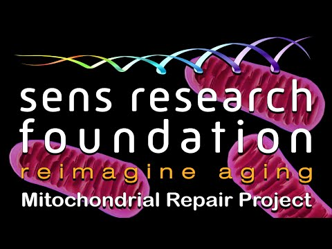 SENS Research Foundation — MitoSENS Mitochondrial Repair Project | Lifespan.io Crowdfunding Campaign