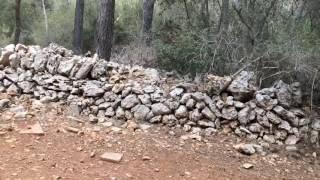Mtb adventure in Mallorca