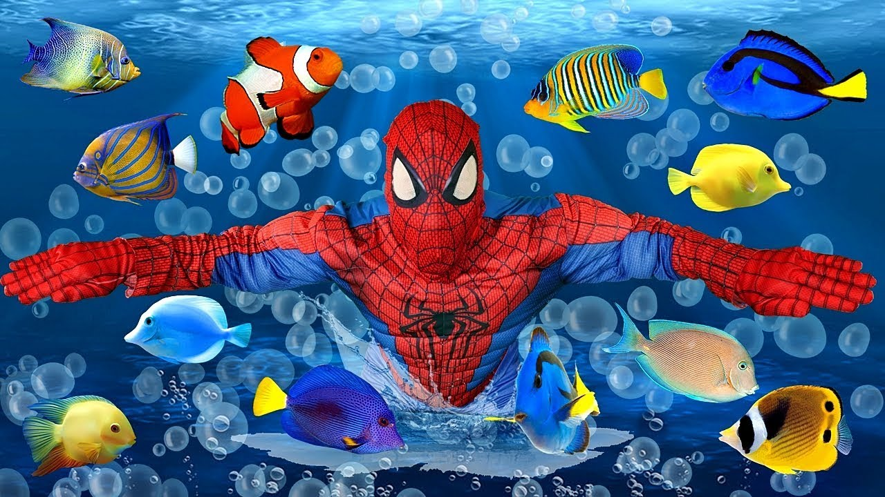 Learn Colors for Kids with SPIDERMAN Under the Sea Colored Fish ...