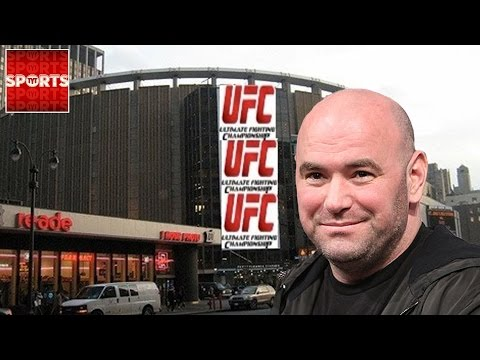 MMA Legalized In NEW YORK, Assemblyman Calls It Gay Porn?!