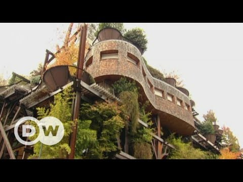 Living in an urban treehouse | DW English