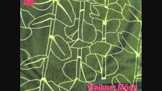 Walkner Möstl - Down
