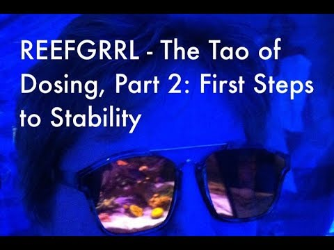 REEFGRRL's Red Sea XL 425 - The Tao of Dosing Part Two - First Steps to Reef Stability