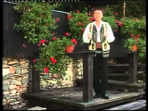 NELU BITINA - Floarea mea de liliac.[ Video Original ].