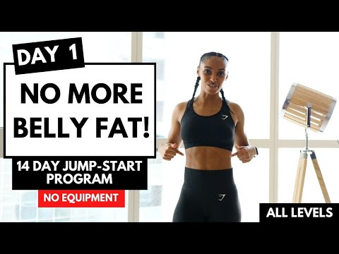 DAY 1 LOSE WEIGHT LOSE BELLY FAT (14 Day Exercise Plan)