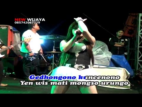 Karaoke Dangdut New Wijaya - Kelayung Layung