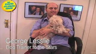 Hollywood's Top Canine Behavior Specialist