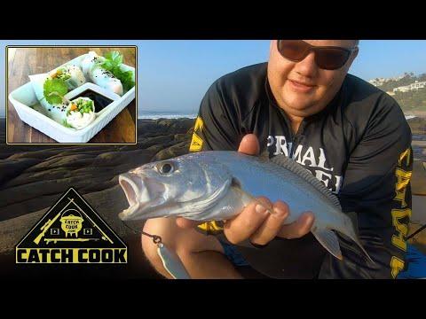 Undersized catch? Cook your bait! Squid spring rolls - Durban, SA