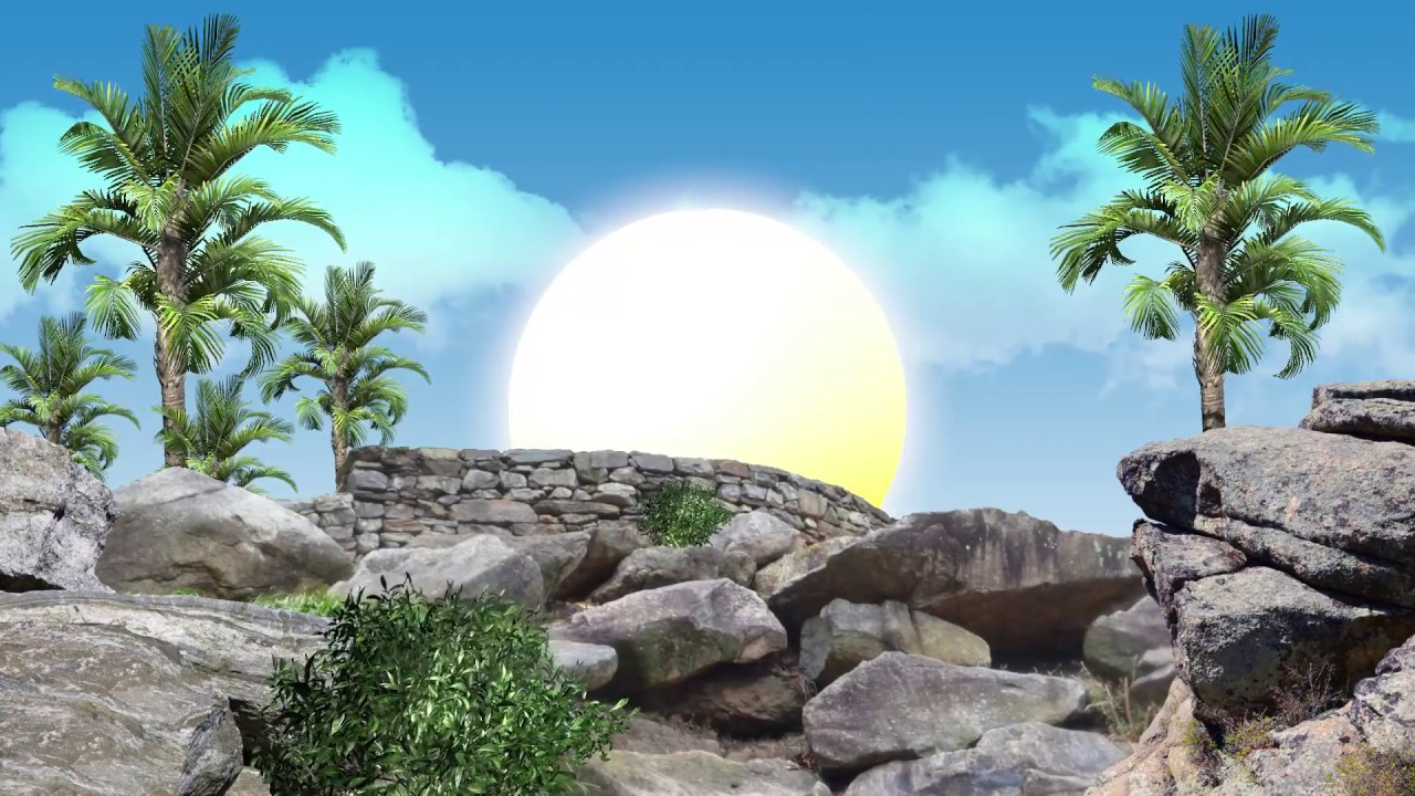 Sunrise Background Video Effects HD-Free Download - YouTube