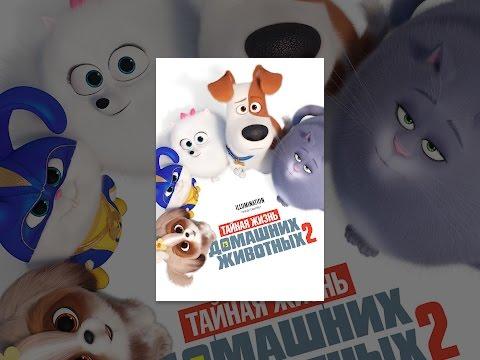 Тайная жизнь домашних животных мультфильм 2016 2