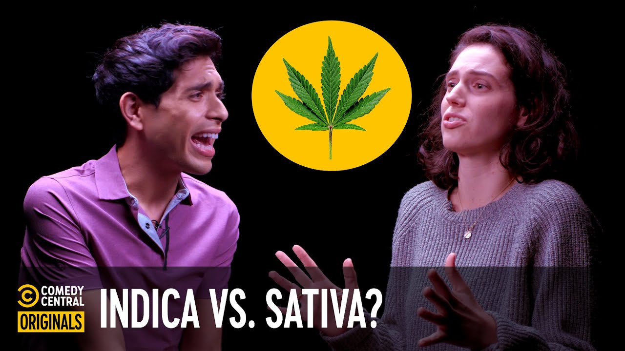 Indica or Sativa: Which Weed Strain Is Better? (ft. Brandon Rogers) - Agree to Disagree