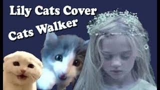 Gambar cover Alan Walker - Lily (Cats/Kucing Version)