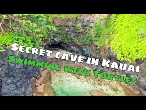 Secret Cave In Kauai. Swimming With Turtles In Kauai At A Secret Location, Turtle Cave Awesome Hike!