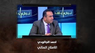 احمد الجالودي - الاصلاح المالي