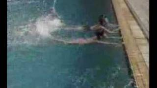 游泳教学视频 自由泳