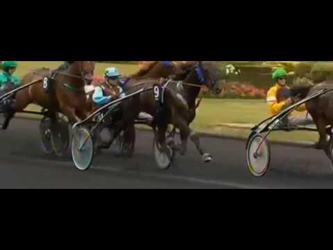 Prix Jockey 2013_Un Mec D