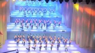 20140629香港各界慶委會主辦青年步操樂隊大匯演:港九街