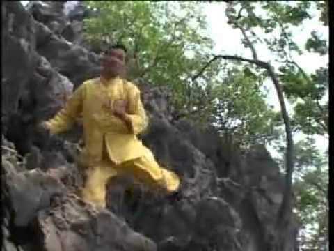 Ngôi sao võ thuật - Võ Lâm Phật Gia Việt Nam