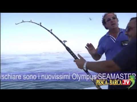Pescasportiva al TONNO nel Golfo di Napoli