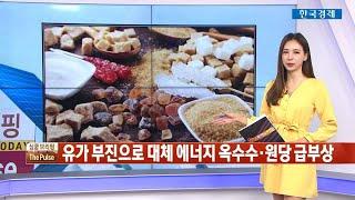 원당 선물·설탕 관련주, 달콤한 강세 / THE PUL…