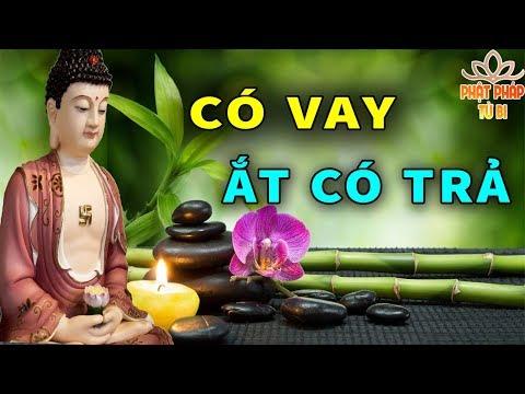 Đêm Khuya Khó Ngủ Nghe Những Câu Chuyện Nhân Quả Phật Còn Tại Thế Rất Hay Giúp Tĩnh Tâm Ngủ Ngon thumbnail